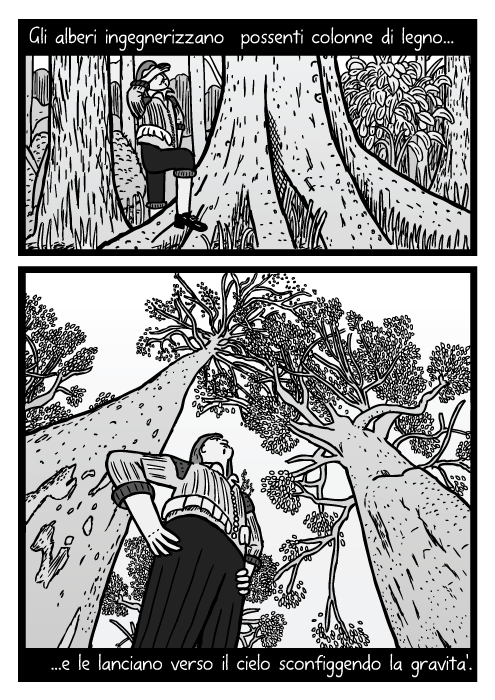 Inquadratura bassa di un disegno di un uomo sotto un albero. Vignetta di tronchi di alberi. Gli alberi ingegnerizzano possenti colonne di legno e le lanciano verso il cielo sconfiggendo la gravita'.