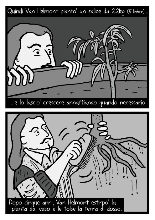 Fumetto di Jean Baptista van Helmont. Vignetta della pulizia delle radici dalla terra. Quindi Van Helmont pianto' un salice da 2.2kg (5 libbre) e lo lascio' crescere annaffiando quando necessario. Dopo cinque anni, Van Helmont estirpo' la pianta dal vaso e le tolse la terra di dosso.