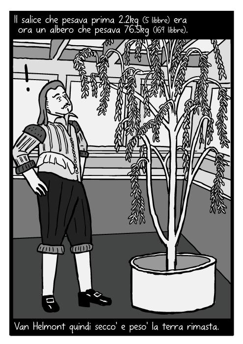 Fumetto di Jean Baptista van Helmont. Disegno del salice di Van Helmont. Il salice che pesava prima 2.2kg (5 libbre) era ora un albero che pesava 76.5kg (169 libbre). Van Helmont quindi secco' e peso' la terra rimasta.
