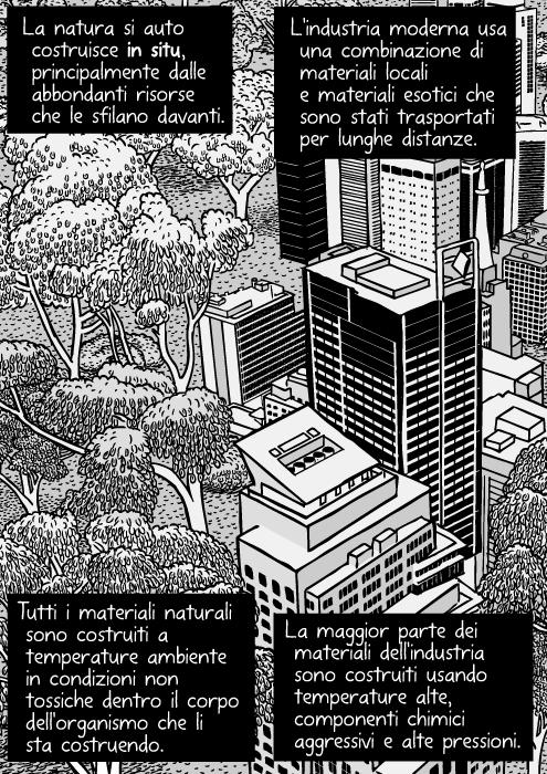 Vignetta di natura urbana. Disegno di grattacieli vicino ai cespugli. Torri di uffici e foresta. Vista aerea di alberi di citta'. La natura si auto costruisce in situ, principalmente dalle abbondanti risorse che le sfilano davanti. L'industria moderna usa una combinazione di materiali locali e materiali esotici che sono stati trasportati per lunghe distanze. Tutti i materiali naturali sono costruiti a temperature ambiente in condizioni non tossiche dentro il corpo dell'organismo che li sta costruendo. La maggior parte dei materiali dell'industria sono costruiti usando temperature alte, componenti chimici aggressivi e alte pressioni.