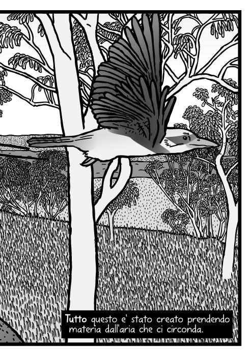 isegno di boscaglia australiana. Drago barbuto del albero della gomma, disegno di uccello Kookaburra.