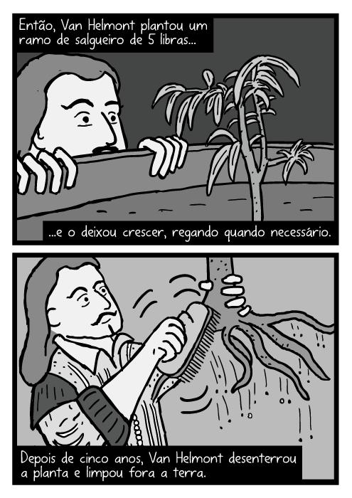 Cartum Jean Baptista van Helmont. Desenho escovando terra do salgueiro. Então, Van Helmont plantou um ramo de salgueiro de 5 libras...e o deixou crescer, regando quando necessário. Depois de cinco anos, Van Helmont desenterrou a planta e limpou fora a terra.
