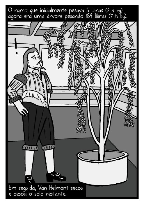 Cartum Jean Baptista van Helmont. Desenho salgueiro Van Helmont. O ramo que inicialmente pesava 5 libras (2 ¼ Kg) agora era uma árvore pesando 169 libras (7 ½ Kg). Em seguida, Van Helmont secou e pesou o solo restante.