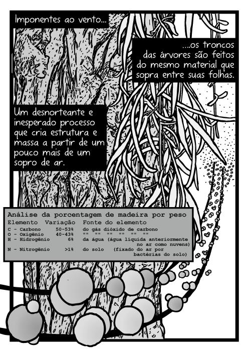 Desenho folhas descascando da árvore. Desenho átomos carbono hidrogênio oxigênio. Moléculas de dióxido de carbono. Imponentes ao vento...os troncos das árvores são feitos do mesmo material que sopra entre suas folhas. Um desnorteante e inesperado processo que cria estrutura e massa a partir de um pouco mais de um sopro de ar. Carbono, oxigênio, hidrogênio, nitrogênio.