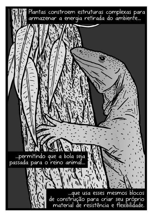 Cartum de lagartos goanna. Desenho Varanus varius. Lagarto na árvore. Plantas constroem estruturas complexas para armazenar a energia retirada do ambiente...permitindo que a bola seja passada para o reino animal...que usa esses mesmos blocos de construção para criar seu próprio material de resistência e flexibilidade.