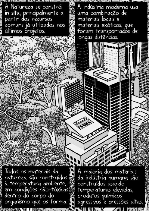 Cartum natureza urbana. Desenho de arranha-céus próximos de mata nativa. Torres de escritórios e floresta. Vista aérea das árvores da cidade. A Natureza se constrói in situ, principalmente a partir dos recursos comuns já utilizados nos últimos projetos. A indústria moderna usa uma combinação de materiais locais e materiais exóticos, que foram transportados de longas distâncias. Todos os materiais da natureza são construídos à temperatura ambiente, em condições não-tóxicas dentro do corpo do organismo que os forma. A maioria dos materiais da indústria humana são construídos usando temperaturas elevadas, produtos químicos agressivos e pressões altas.