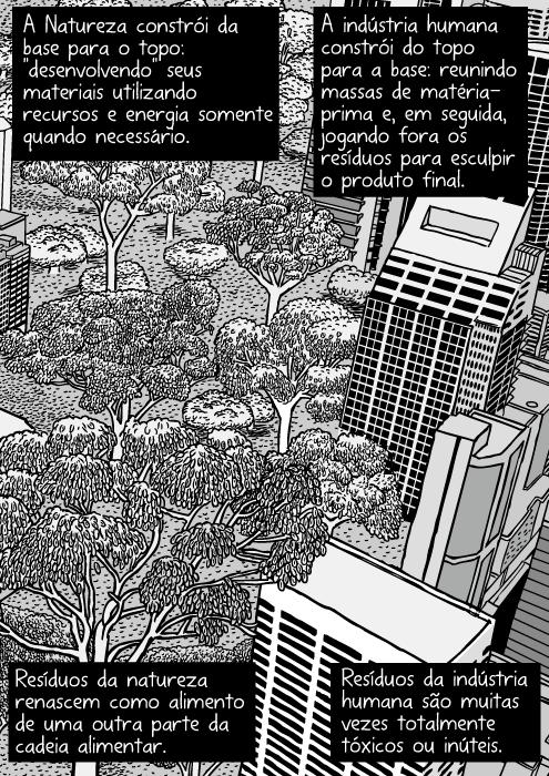 Cartum natureza urbana. Desenho de arranha-céus próximos de mata nativa. Torres de escritórios e floresta. Vista aérea das árvores da cidade. A Natureza constrói da base para o topo: