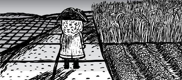 Cartoon explorer looks over cleared farmland.