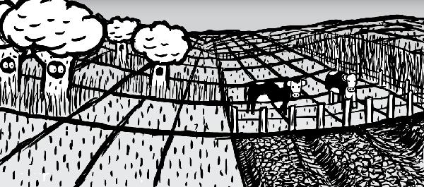 Farmlands cartoon. Farming cattle drawing. Land grid.