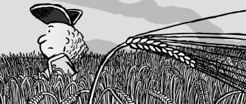 Cartoon man walking through wheat field cartoon illustration