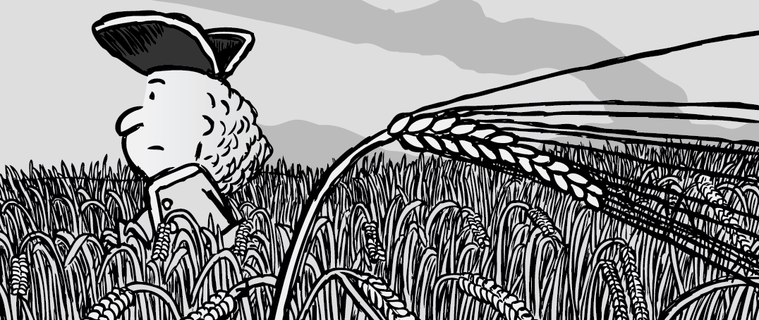 Cartoon man walking through wheat field cartoon illustration