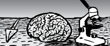 Human brain on table next to microscope illustration