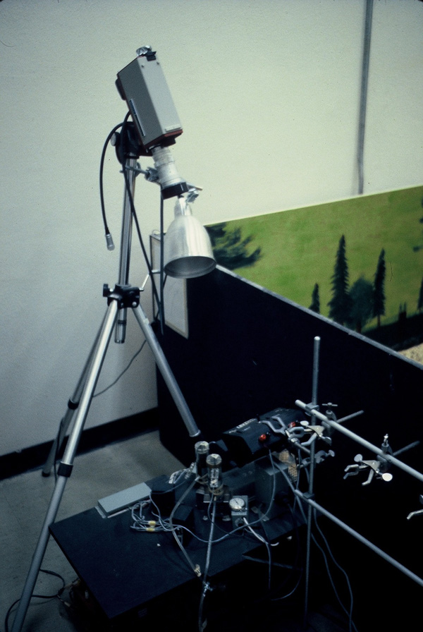 Rat Park science experiment camera setup. Camcorder used to photograph the rats in the tunnel drinking morphine.