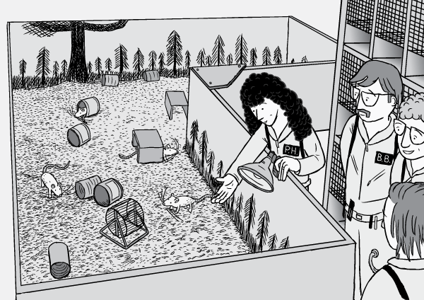 Rat Park drug experiment comic. Black and white high angle drawing of rat enclosure and science researchers. Cartoon rats, cans, running wheels. Drawing of female scientist putting rat into cage. Scientists standing next to laboratory rat enclosure.