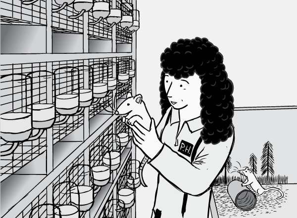 Drawing of Rat Park researcher Patricia Hadaway holding rat. Cartoon of laboratory cage racks and fluid bottles.