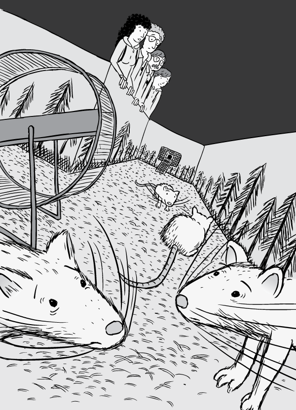 Dutch angle drawing. Tilted perspective of cartoon rats addicted to drugs. View of drug habituated rats inside Rat Park experiment.