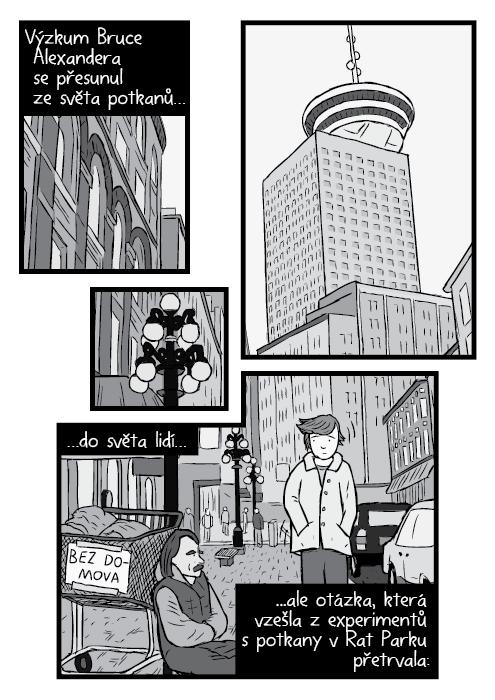 Komiks Vancouver Harbour Centre podhled černobílá kresba. Muž míjející bezdomovce sedícího na ulici. Výzkum Bruce Alexandera se přesunul ze světa potkanů… …do světa lidí… ale otázka, která vzešla z experimentů s potkany v Rat Parku přetrvala: