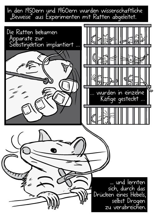 """Gezeichnete Operation an einer Ratte. Schlauch in Halsader. Ratten in Käfigen in einem Regal. In den 1950ern und 1960ern wurden wissenschaftliche """"Beweise"""" aus Experimenten mit Ratten abgeleitet. Die Ratten bekamen Apparate zur Selbstinjektion implantiert …wurden in einzelne Käfige gesteckt … und lernten sich, durch das Drücken eines Hebels, selbst Drogen zu verabreichen."""