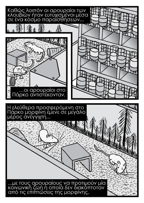 Πάρκο των αρουραίων σκάρα κλουβιών από ψηλά σκίτσο κόμικ. Καθώς λοιπόν οι αρουραίοι των κλουβιών ήταν ευτυχισμένοι μέσα σε ένα κόσμο παραισθήσεων...οι αρουραίοι στο Πάρκο αντιστέκονταν. Η ελεύθερα προσφερόμενη στο Πάρκο μορφίνη έμενε σε μεγάλο μέρος ανέγγιχτη...με τους αρουραίους να προτιμούν μία κοινωνική ζωή η οποία δεν διακόπτοταν από τις επιπτώσεις της μορφίνης.