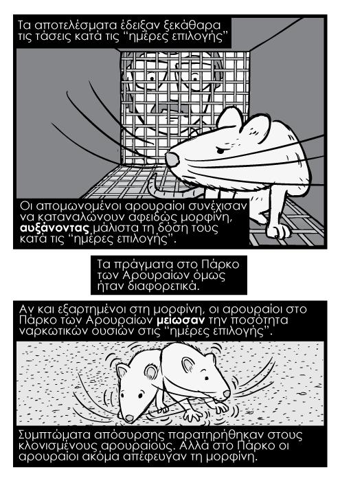 """Ασπρόμαυρο καρτούν κόμικ αρουραίος μέσα σε κελί, και επιστήμονας να τον κοιτά. Τα αποτελέσματα έδειξαν ξεκάθαρα τις τάσεις κατά τις """"ημέρες επιλογής"""". Οι απομωνομένοι αρουραίοι συνέχισαν να καταναλώνουν αφειδώς μορφίνη, αυξάνοντας μάλιστα τη δόση τους κατά τις """"ημέρες επιλογής"""". Τα πράγματα στο Πάρκο των Αρουραίων όμως ήταν διαφορετικά. Αν και εξαρτημένοι στη μορφίνη, οι αρουραίοι στο Πάρκο των Αρουραίων μείωσαν την ποσότητα ναρκωτικών ουσιών στις """"ημέρες επιλογής"""". Συμπτώματα απόσυρσης παρατηρήθηκαν στους κλονισμένους αρουραίους. Αλλά στο Πάρκο οι αρουραίοι ακόμα απέφευγαν τη μορφίνη."""