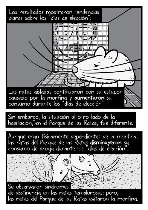 Caricatura a blanco y negro de una rata dentro de una jaula y un investigador mirándola.