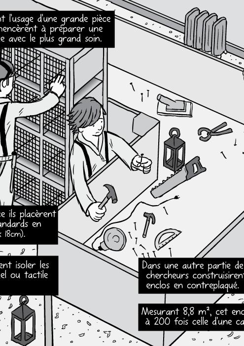 Le dessin d'un ensemble de cages de laboratoire standards. Dans une autre partie de la pièce , les chercheurs construisirent un vaste enclos en contreplaqué Mesurant 8,8 m2 , cet enclos avait une surface égale à 200 fois celle d'une cage standard de laboratoire.
