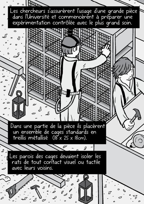 Le dessin du travail de menuiserie. Dessin d'un box en bois. Les chercheurs s'assurèrent l'usage d'une grande pièce dans l'Université et commencèrent à préparer une expérimentation contrôlée avec le plus grand soin. Dans une partie de la pièce ils placèrent un ensemble de cages standards en treillis métallisé (18*25*18 cm). Les parois des cages devaient isoler les rats de tout contact visuel ou tactile avec leurs voisins.