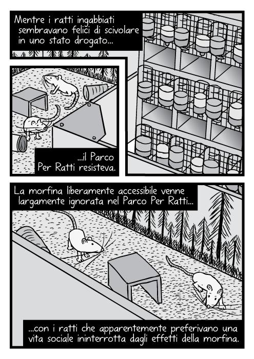 Disegno a vista larga dei ratti del Parco Dei Ratti e file di gabbie. Mentre i ratti ingabbiati sembravano felici di scivolare in uno stato drogato il Parco Dei Ratti resisteva. La morfina liberamente accessibile venne largamente ignorata nel Parco Dei Ratti con i ratti che apparentemente preferivano una vita sociale ininterrotta dagli effetti della morfina.