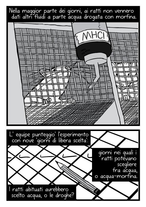 Disegno inquadratura dal basso ratti dentro gabbie di filo di ferro. Nella maggior parte dei giorni, ai ratti non vennero dati altri fluidi a parte acqua drogata con morfina. L' equipe punteggio' l'esperimento con nove 'giorni di libera scelta': giorni nei quali i ratti potevano scegliere fra acqua, o acqua-morfina. I ratti abituati avrebbero scelto acqua, o le droghe?