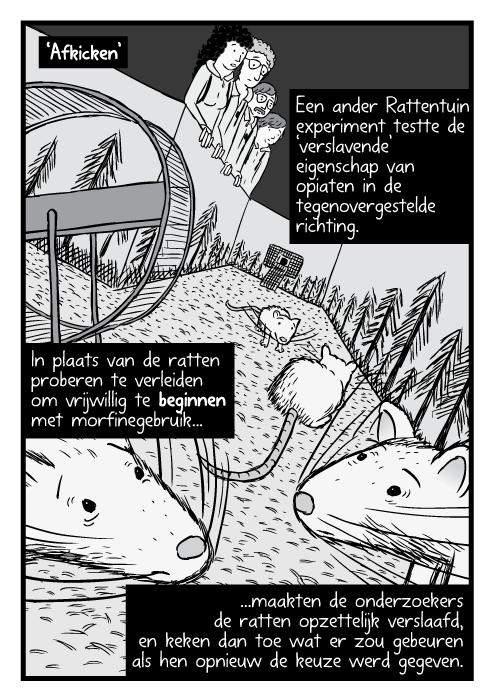 'Afkicken'. Een ander Rattentuin experiment testte de 'verslavende' eigenschap van opiaten in de tegenovergestelde richting. In plaats van de ratten proberen te verleiden om vrijwillig te beginnen met morfinegebruik, maakten de onderzoekers de ratten opzettelijk verslaafd, en keken dan toe wat er zou gebeuren als hen opnieuw de keuze werd gegeven.