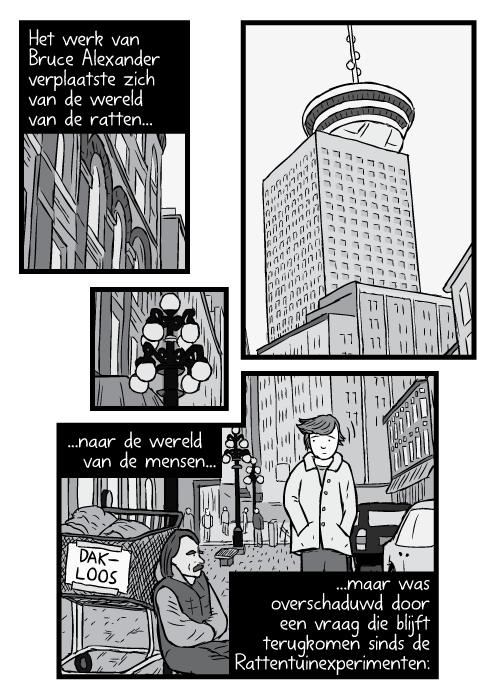 Cartoon Vancouver Harbour Centre kikkerperspectief zwart wit tekening. Man wandelt voorbij dakloze man op straat. Het werk van Bruce Alexander verplaatste zich van de wereld van de ratten...naar de wereld van de mensen...maar was overschaduwd door een vraag die blijft terugkomen sinds de Rattentuinexperimenten: