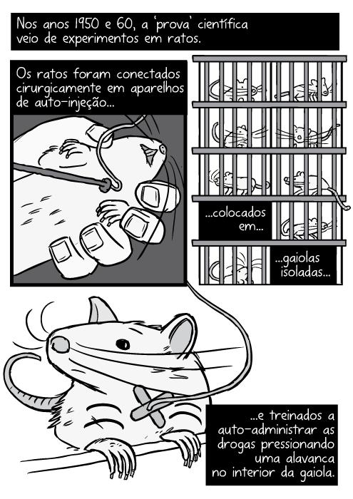 Cartum cirugia rato. Desenho tubo na veia jugular. Rato dentro gaiola rack preto e prato. Nos anos 1950 e 60, a 'prova' científica veio de experimentos em ratos. Os ratos foram conectados cirurgicamente em aparelhos de auto-injeção...colocados em gaiolas isoladas...e treinados a auto-administrar as drogas pressionando uma alavanca no interior da gaiola.