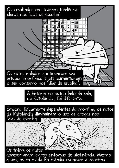 """Cartum preto e branco rato dentro gaiola, pesquisador olhando dentro. Os resultados mostraram tendências claras nos """"dias de escolha"""": Os ratos isolados continuaram seu estupor morfínico e até aumentaram o seu consumo nos """"dias de escolha"""". A história no outro lado da sala, na Ratolândia, foi diferente. Embora fisicamente dependentes da morfina, os ratos da Ratolândia diminuíram o uso de drogas nos """"dias de escolha"""". Os trêmulos ratos apresentaram claros sintomas de abstinência. Mesmo assim, os ratos da Ratolândia evitaram a morfina."""
