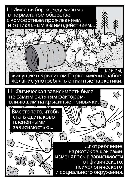 Изображения карикатурных крыс. Пародия обложки Лед Зеппелин II. Чёрно-белая карикатурная обложка Лед Зеппелин III. II : Имея выбор между жизнью в нормальном обществе с комфортным проживанием и социальным взаимодействием крысы, живущие в Крысином Парке, имели слабое желание употреблять опиатные наркотики. III : Физическая зависимость была не самым сильным фактором, влияющим на крысиные привычки. Вместо того, чтобы стать одинаково пленёнными зависимостью потребление наркотиков крысами изменялось в зависимости от физического, психологического и социального окружения.