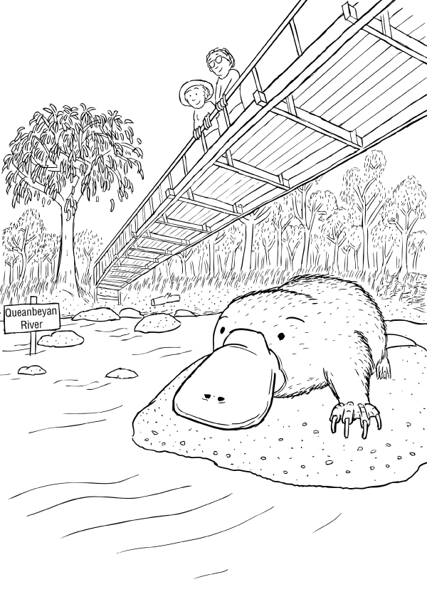 Cartoon low-angle scene of platypus on river rock. People and woman looking down from bridge overhead.