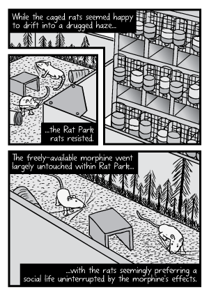 Rat Park comic page: Cartoon of the caged and enclosure rats. The Rat Park rats resisted the temptation to take drugs.