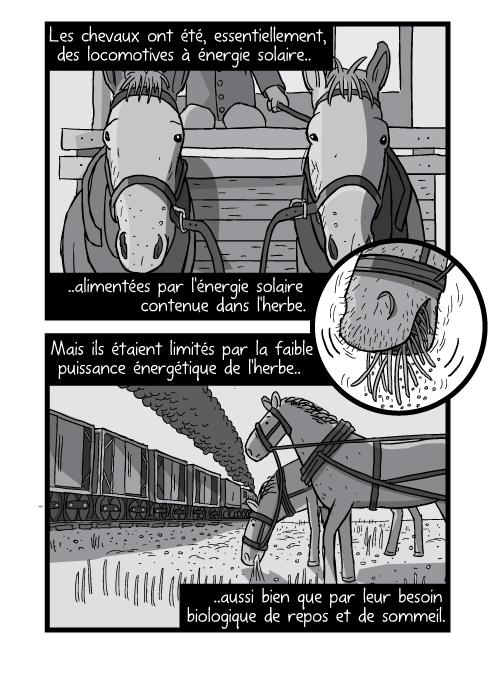 Un dessin en noir et blanc de chevaux harnachés. Les chevaux ont été, essentiellement, des locomotives à énergie solaire alimentées par l'énergie solaire contenue dans l'herbe. Mais ils étaient limités par la faible puissance énergétique de l'herbe aussi bien que par leur besoin biologique de repos et de sommeil.