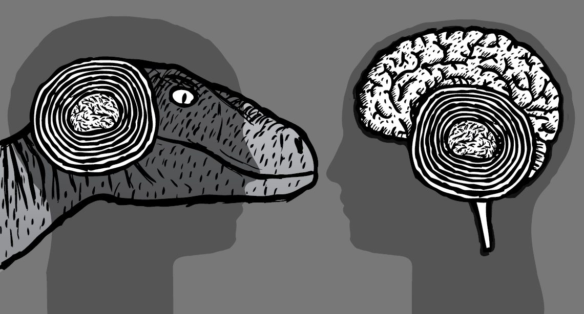 Comparison of human brain versus dinosaur brain, showing the primitive 'reptilian brain' near the amygdala.