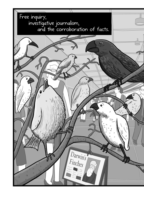 Free inquiry, investigative journalism, and the corroboration of facts. Illustration of Darwin's finches in a museum, perched on branches cartoon.