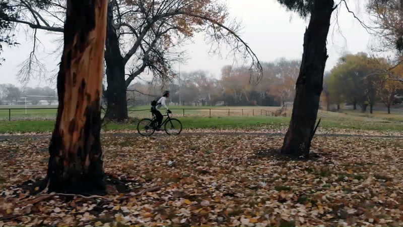 Side view of cyclist riding along autumn bikeway on cloudy morning in Canberra.