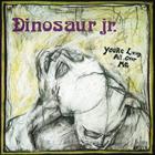 17. Dinosaur Jr. - You're Living All Over Me