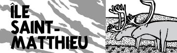 Île Saint-Matthieu