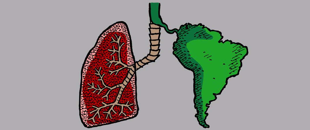 Cartoon lung next to cartoon of South America