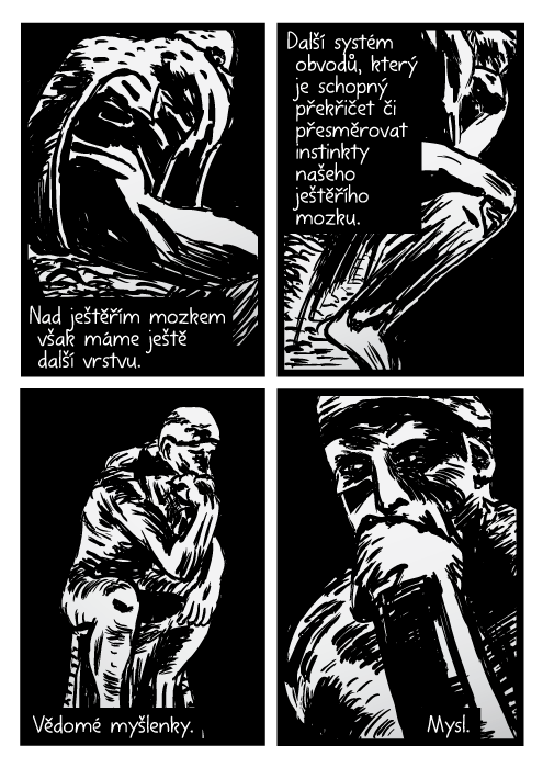 Socha Myslitel komiks. Auguste Rodin kresba. Nad ještěřím mozkem však máme ještě další vrstvu. Další systém obvodů, který je schopný překřičet či přesměrovat instinkty našeho ještěřího mozku. Vědomé myšlenky. Mysl.