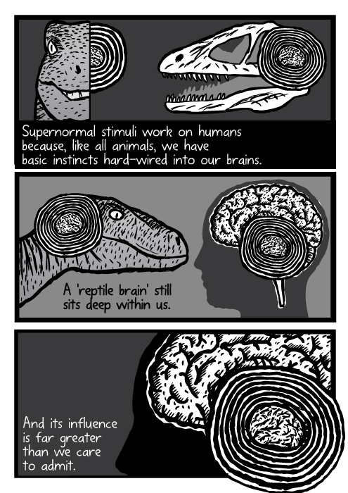 Velociraptor raptor dinosaur skull brain human silhouette drawing cartoon. Supernormal stimuli work on humans because, like all animals, we have basic instincts hard-wired into our brains. A 'reptile brain' still sits deep within us. And its influence is far greater than we care to admit.