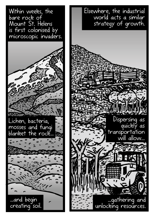 Mount St. Helens cartoon. Logging truck drawing. Within weeks, the bare rock of Mount St. Helens is first colonised by microscopic invaders. Lichen, bacteria, mosses and fungi blanket the rock...and begin creating soil. Elsewhere, the industrial world acts a similar strategy of growth. Dispersing as quickly as transportation will allow...gathering and unlocking resources.