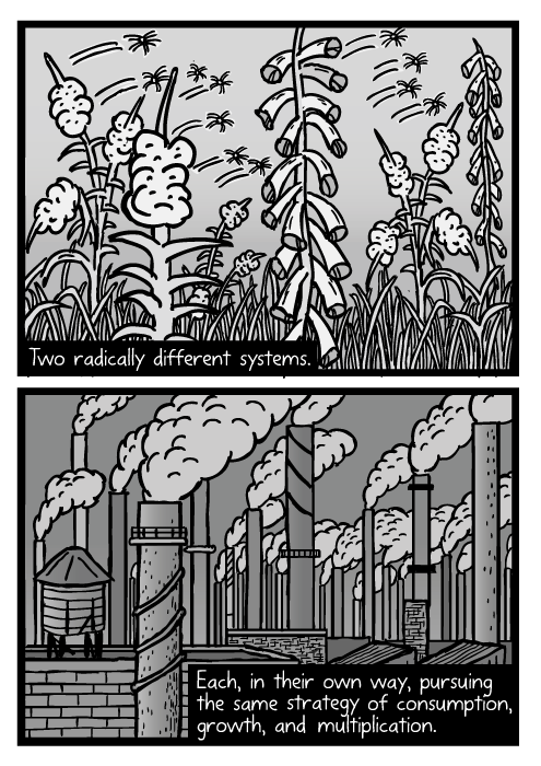 Weed seed cartoon. Blowing fireweed seeds drawing. Industrial smokestacks smoke. Two radically different systems. Each, in their own way, pursuing the same strategy of consumption, growth, and multiplication.