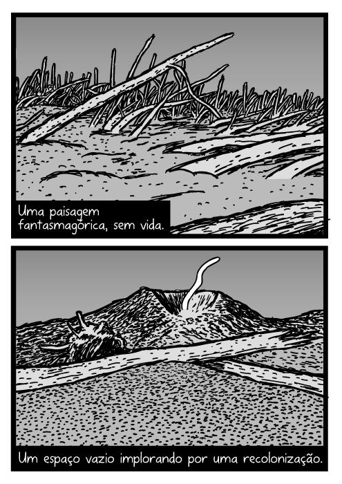 Cartum do Monte Santa Helena. Desenho de troncos de árvores caídos em cinzas vulcânicas. Área de Purga. Uma paisagem fantasmagórica, sem vida. Um espaço vazio implorando por uma recolonização.