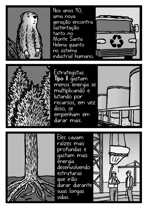 Cartum de árvores e suas raízes. Desenho de indústria de construção. Nos anos 90, uma nova geração encontra sustentação tanto no Monte Santa Helena quanto no sistema industrial humano. Estrategistas Tipo II gastam menos energia se multiplicando e lutando por recursos, em vez disso, se empenham em durar mais. Eles cavam raízes mais profundas e gastam mais energia desenvolvendo estruturas que irão durar durante suas longas vidas.