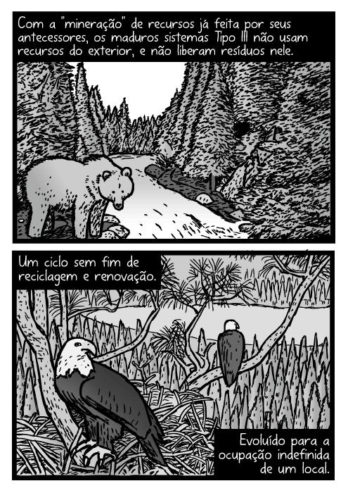 Cartum de urso da montanha em um córrego. Desenho do ninho de uma águia. Com a